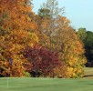 Autumn colored trees on golf course