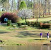 boys in golf course near pond
