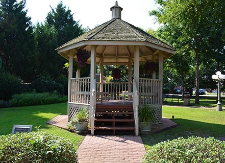 Visit Carol's Park